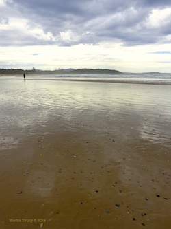 Feature Image - Sawtell