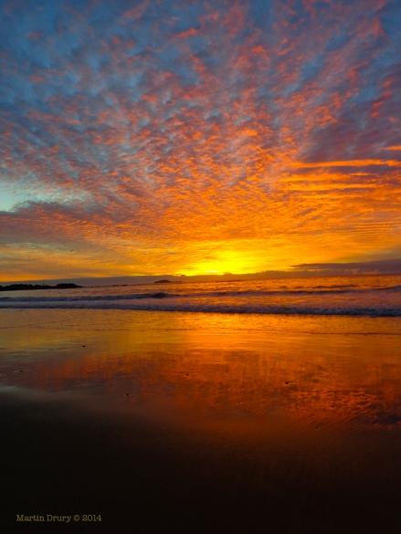 Korora Sunrise 14