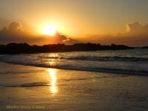 Korora Sunrise Two - 37