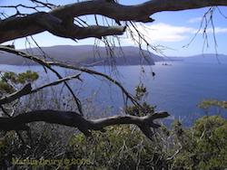 Feature Image - Tasman National Park