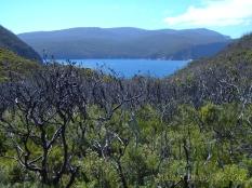 Tasman Peninsula 4
