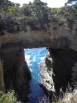 Tasman Peninsula 13