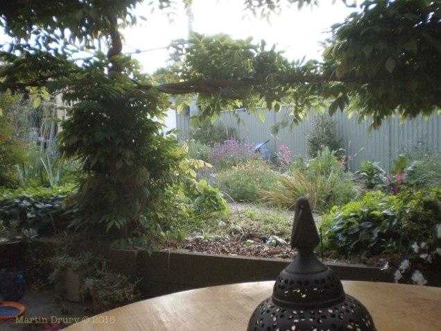 Garden 4