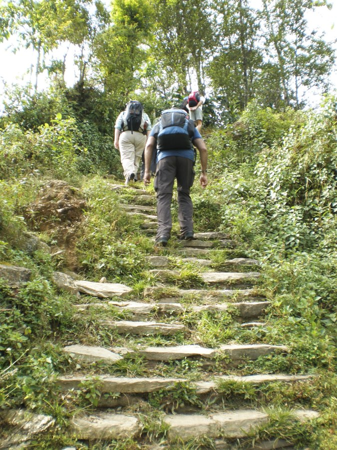 The climb continues